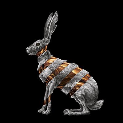 San Fermin - Jackrabbit Album Cover