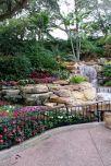 Sea World Gardens